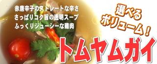 トムヤムガイスープ(鶏肉のトムヤムスープ)